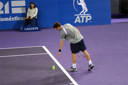 Andy Murray al servicio